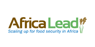 AFRICA LEAD